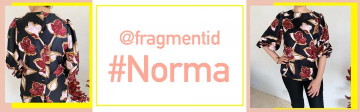 Fragmentid Norma banner